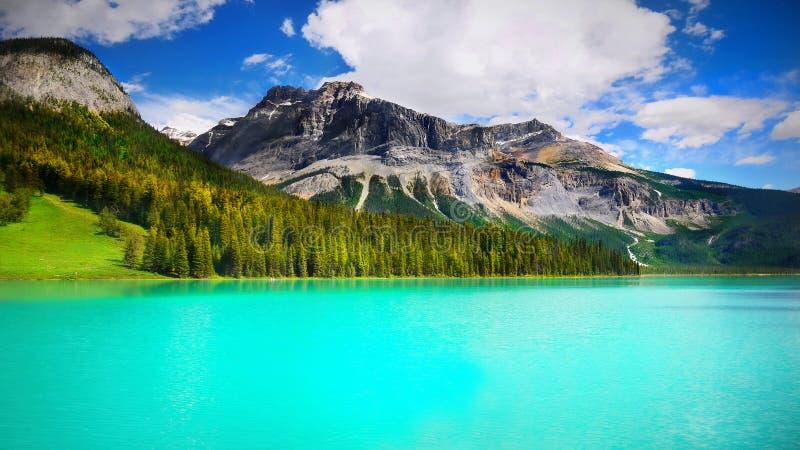 加拿大鲜绿色湖国家公园yoho 免版税库存照片