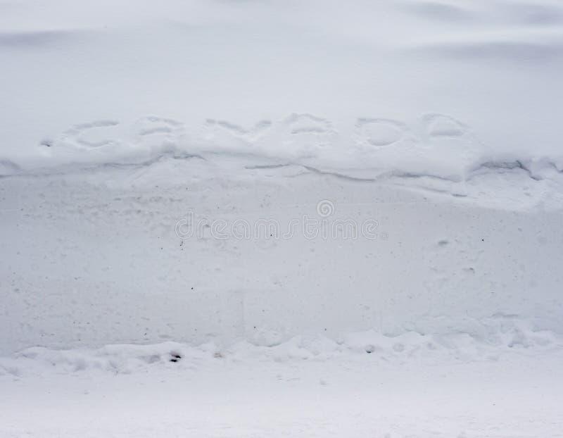 加拿大,雪土地  免版税库存图片