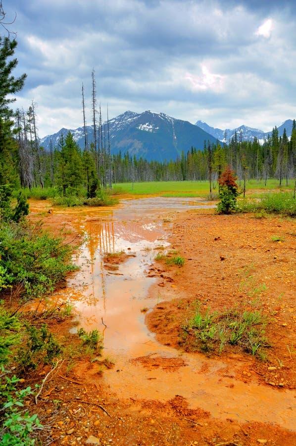 加拿大kootenay国家公园 库存图片