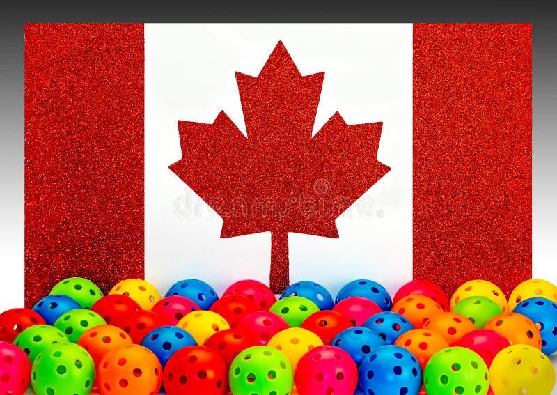 加拿大Pickleball 库存照片