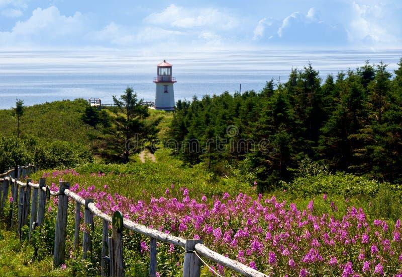 加斯佩半岛,魁北克,加拿大 免版税库存照片