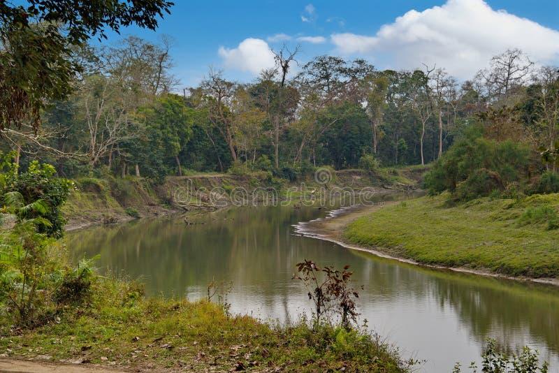 加济兰加国家公园狂放的地方  免版税库存图片