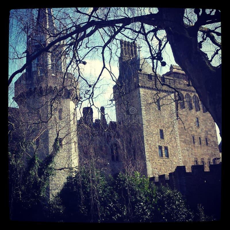 加的夫城堡 库存图片