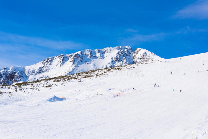 加盖的山雪 图库摄影
