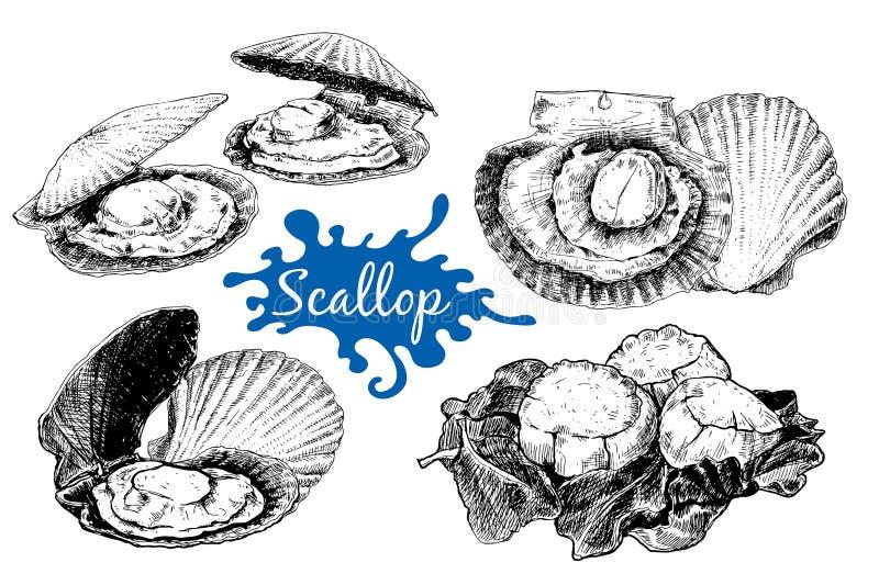 加调料烘烤海壳,剪影样式传染媒介例证 皇族释放例证