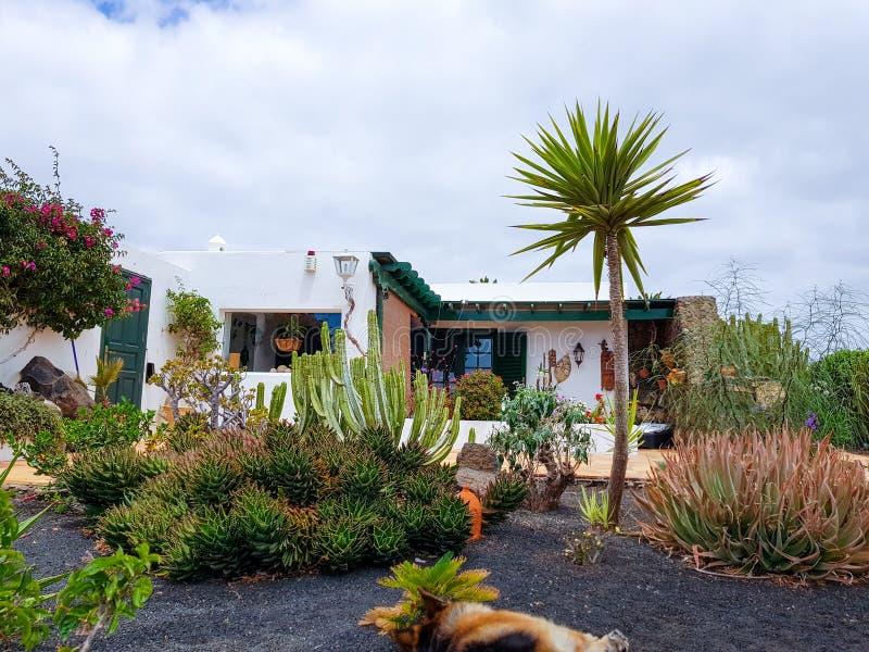 加那利群岛海岸和它的植被的典型的房子细节  r 图库摄影