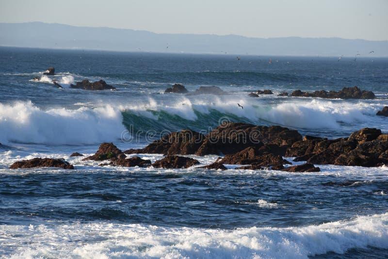 加那利群岛海洋海浪tenerife 免版税库存图片