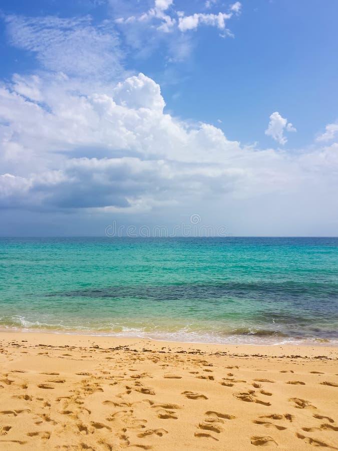 加那利群岛海滩 库存图片
