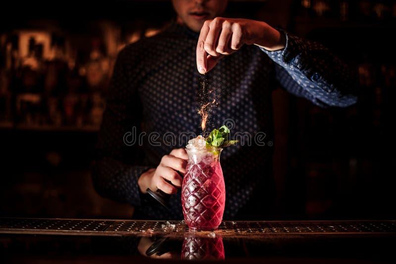 加香料的侍酒者入新鲜和甜草莓mojito夏天鸡尾酒 免版税库存照片