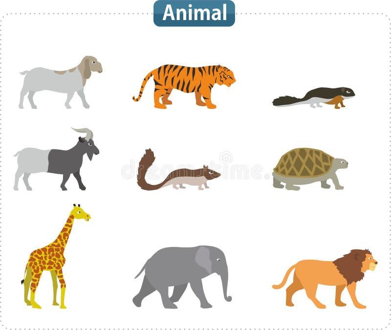 动物例证 库存图片