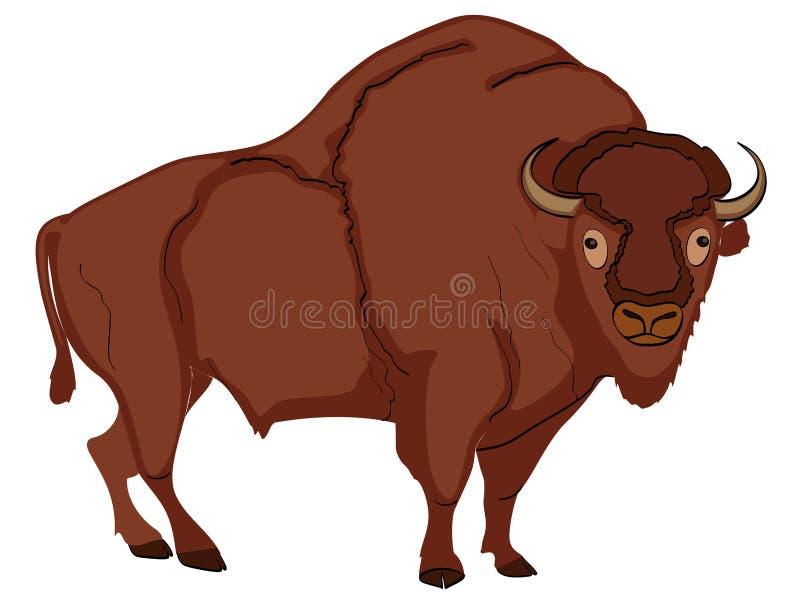 动物偶蹄动物,北美野牛,母牛 漫画书样式模仿 在白色背景的对象 皇族释放例证