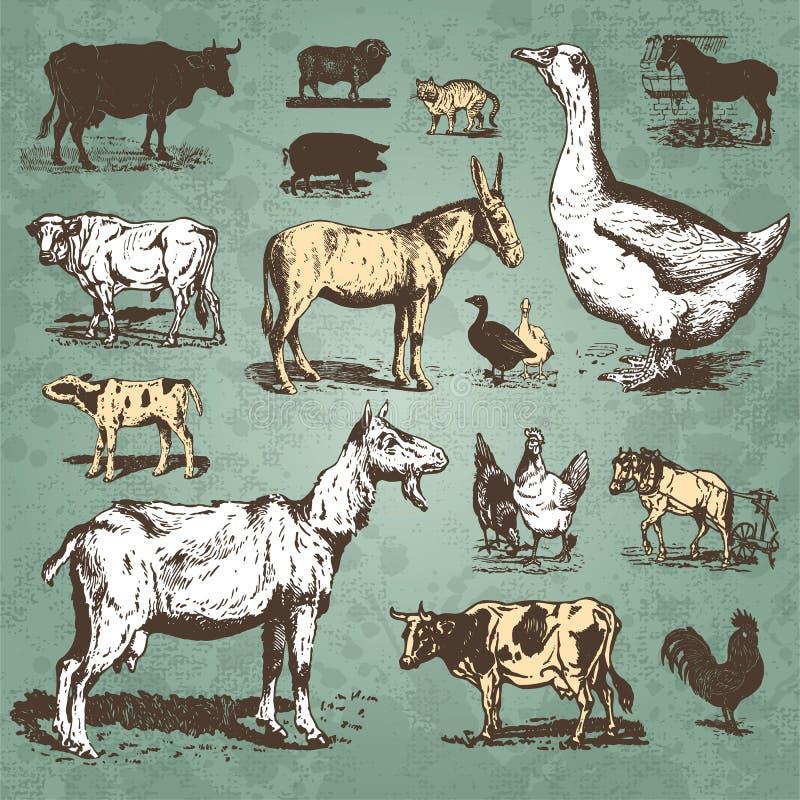 动物农场集合向量葡萄酒 皇族释放例证
