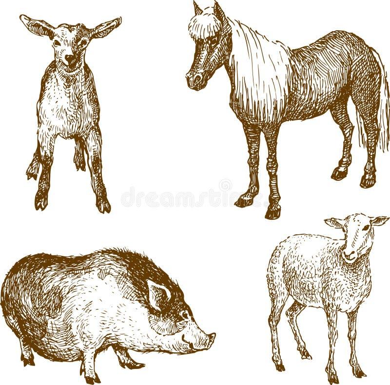 动物农场 库存例证