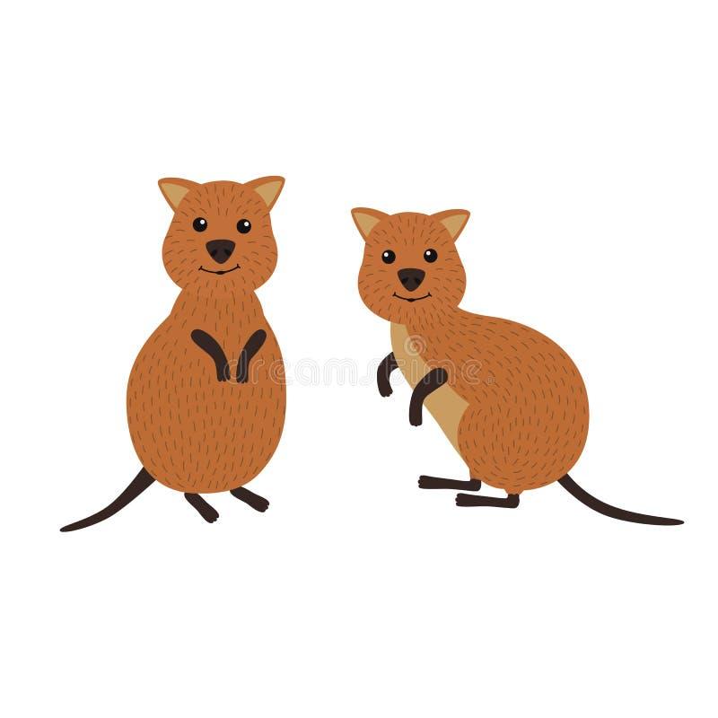 动物动画片被画的现有量查出的向量白色 一个对quokka 向量例证