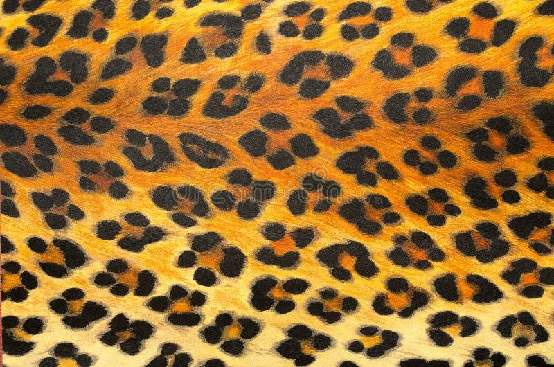 动物印刷品背景纹理 库存图片