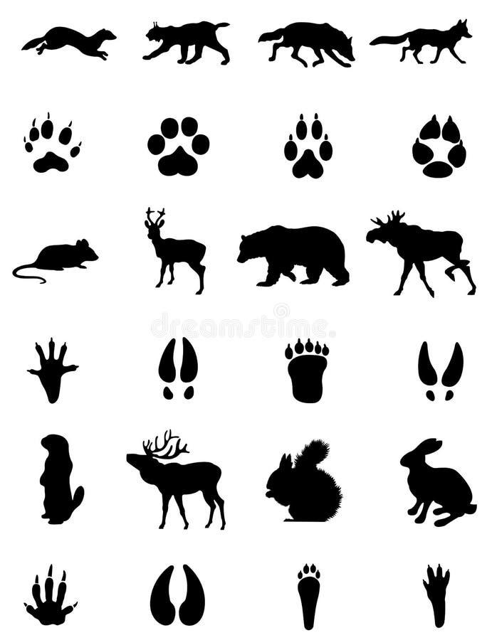 动物和它的踪影siluets 皇族释放例证