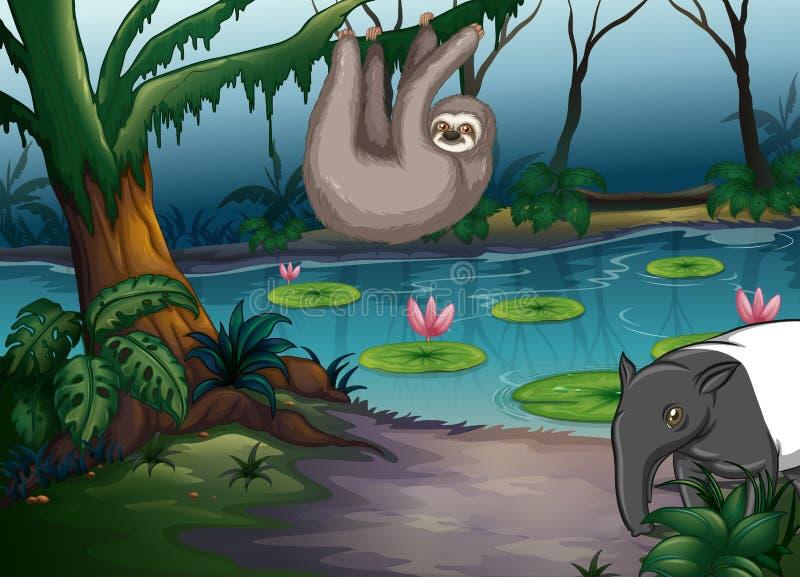 动物和池塘 向量例证