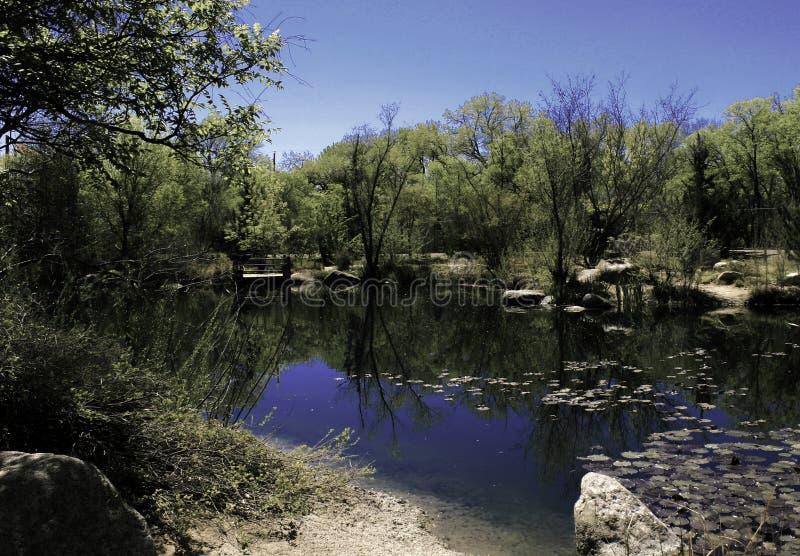 动物园的湖 免版税图库摄影