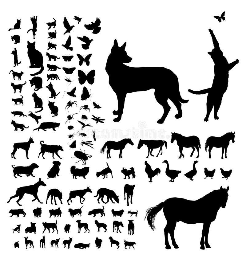 动物在白色的剪影汇集 库存例证