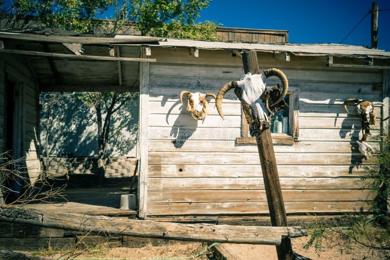 动物头骨装饰这个房子的外部 免版税库存图片