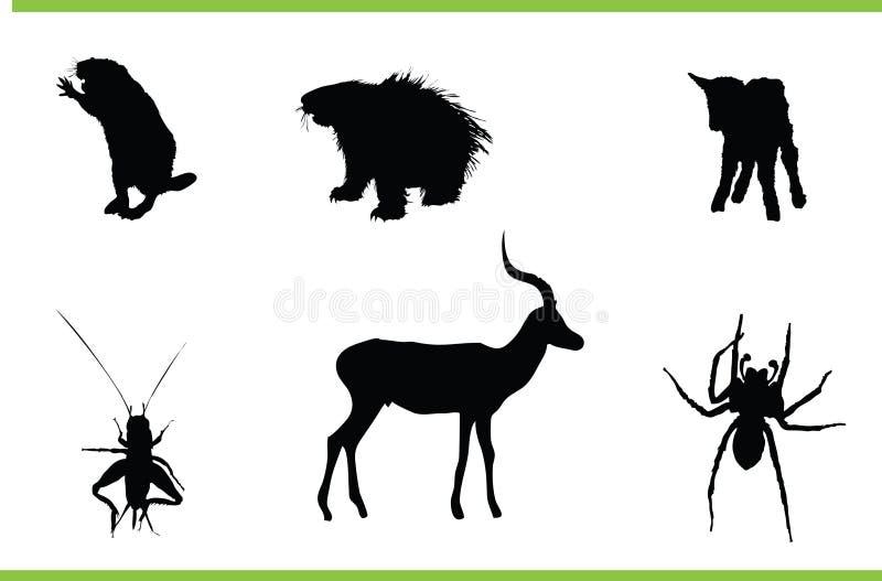 动物收集向量 库存例证