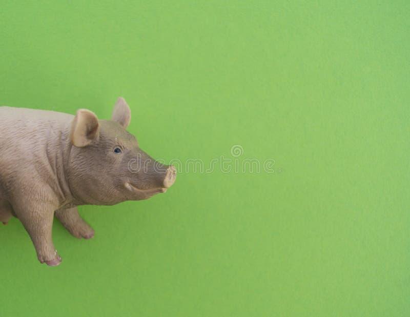 动物是儿童` s玩具 免版税库存照片