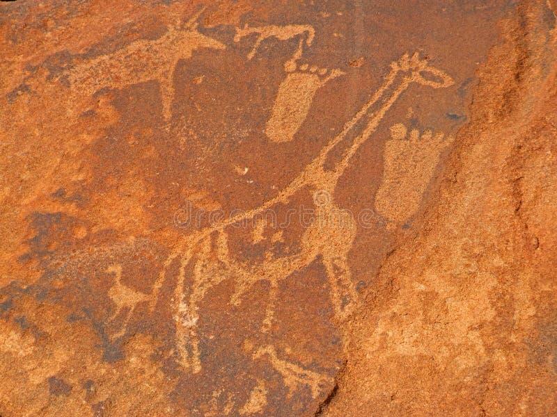 动物板刻纳米比亚岩石twyfelfontein 免版税库存照片