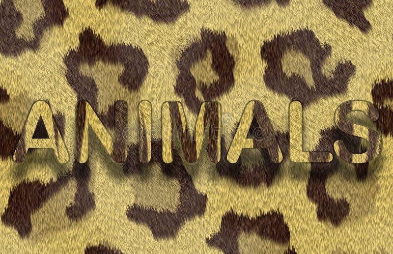 动物毛皮豹子 皇族释放例证