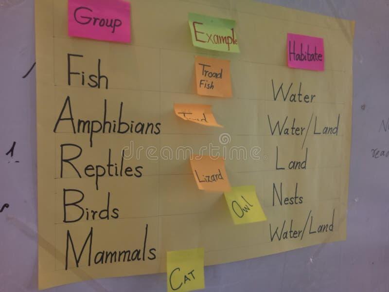 动物的分类根据他们的栖所的 免版税库存图片