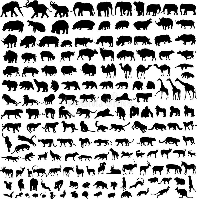 动物等高剪影 库存图片