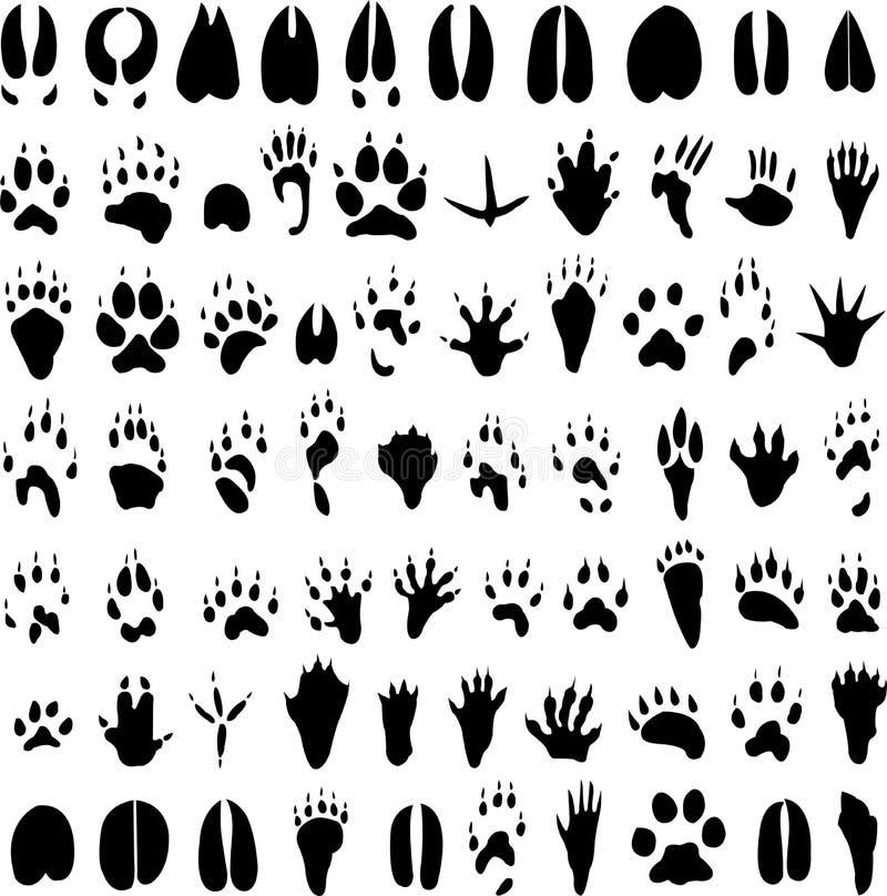 动物脚印剪影 免版税库存照片