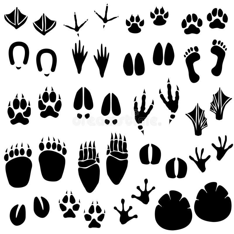 动物脚印跟踪向量 皇族释放例证