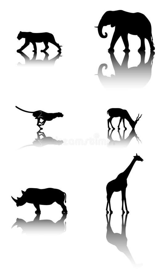 动物设置了野生生物 图库摄影