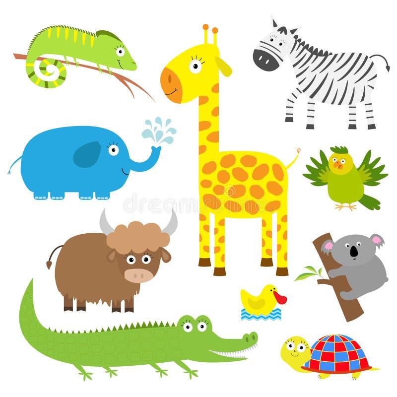 动物逗人喜爱的集 婴孩背景复制空间文本 考拉、鳄鱼、长颈鹿、鬣鳞蜥、斑马、牦牛、乌龟、大象、鸭子和鹦鹉 平的设计 向量例证