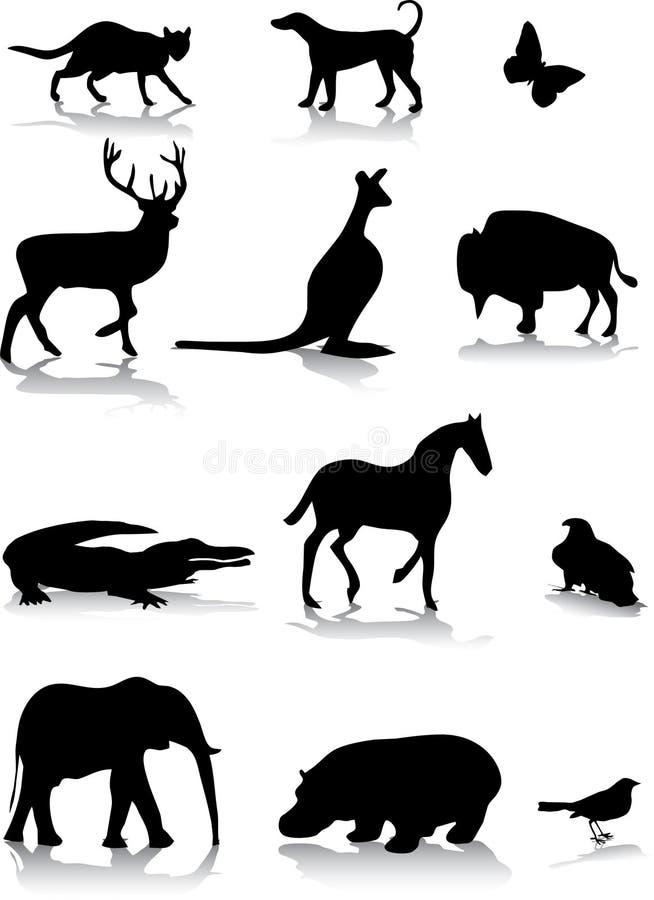 动物 向量例证