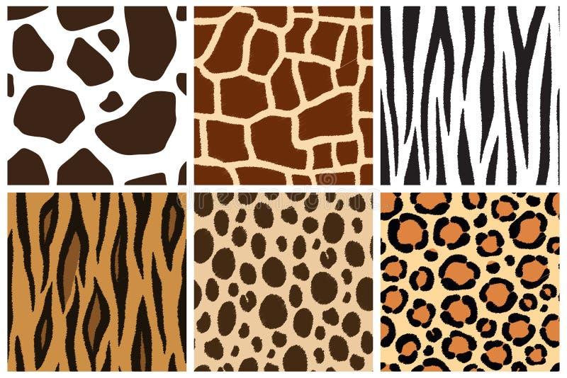 动物skin.four background.texture 设计的无缝的样式 母牛,长颈鹿,斑马,老虎,猎豹,豹子 库存例证