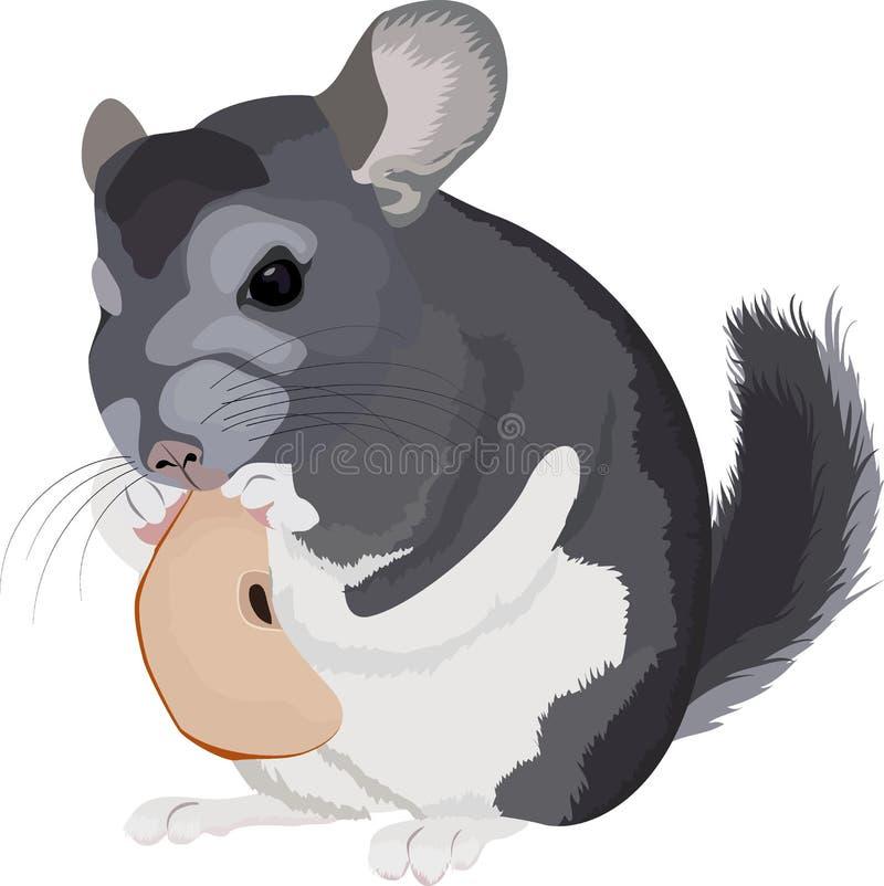 动画片灰色黄鼠的例证 向量例证
