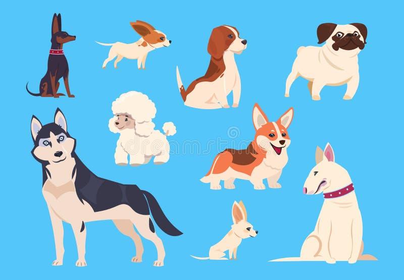 动画片狗品种 小狗和爱斯基摩、长卷毛狗和小猎犬、哈巴狗和奇瓦瓦狗,杂种犬 可笑的宠物传染媒介 向量例证