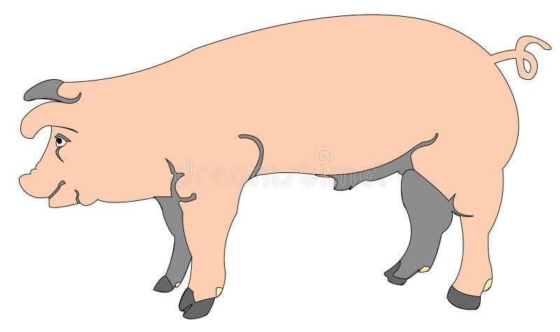 动画片猪 皇族释放例证