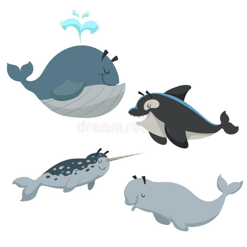 动画片被设置的夏恩动物 与喷泉,虎鲸海怪的鲸鱼,白色白海豚鲸鱼和narwhal 海和nord海洋动物 向量例证