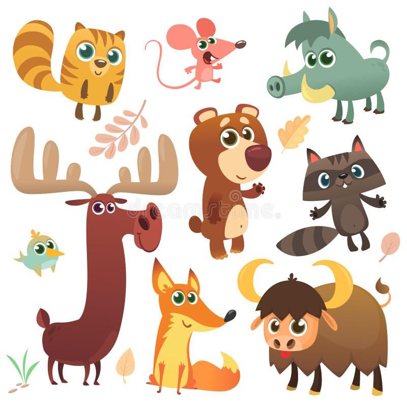 动画片被设置的森林地动物 被说明的传染媒介 贮藏老鼠浣熊公猪狐狸,水牛熊麋鸟 向量例证