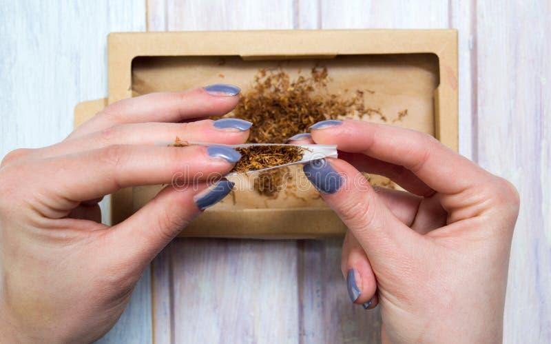 滚动雪茄用烟草的女性手 免版税库存图片