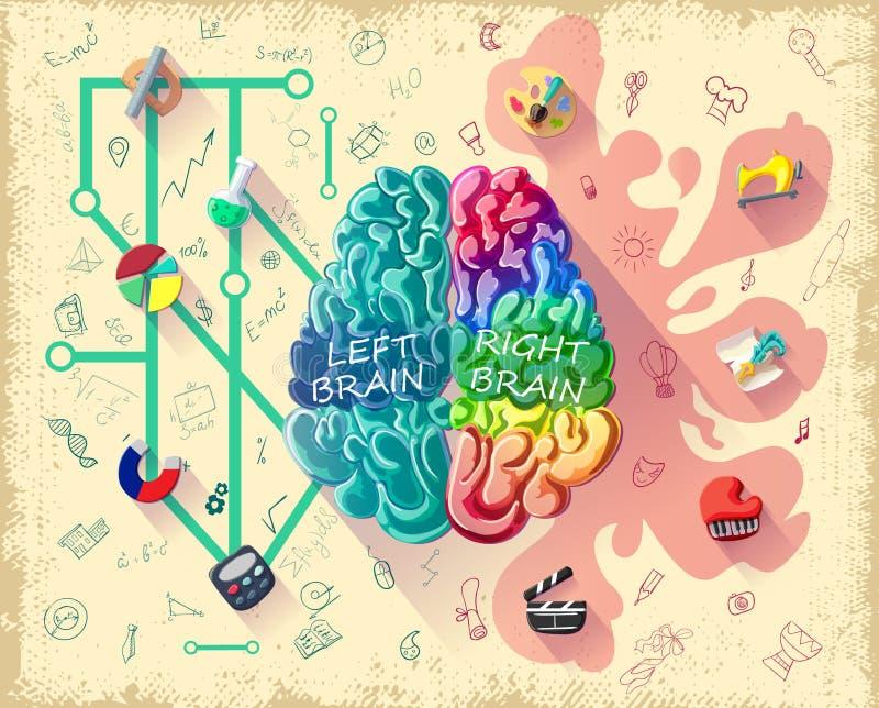 动画片人脑图概念 向量例证