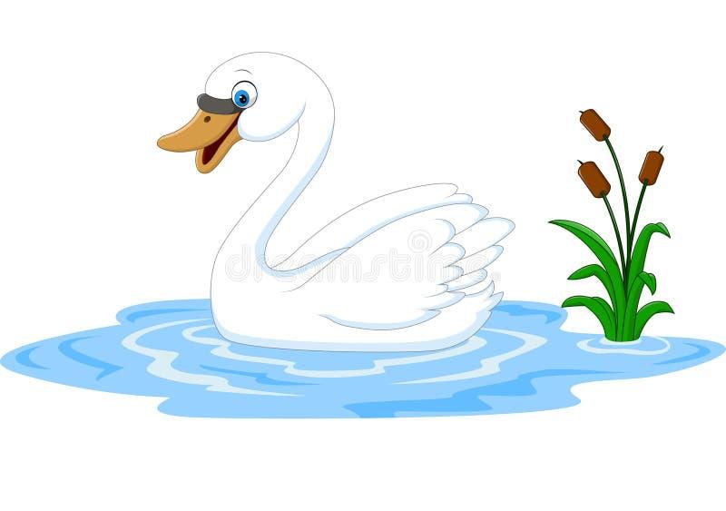 动画片秀丽天鹅在水漂浮