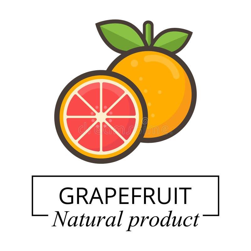动画片葡萄柚标签 向量例证