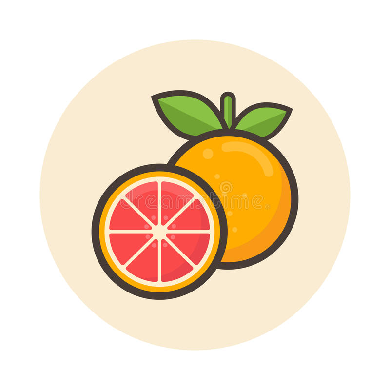 动画片葡萄柚象 库存例证