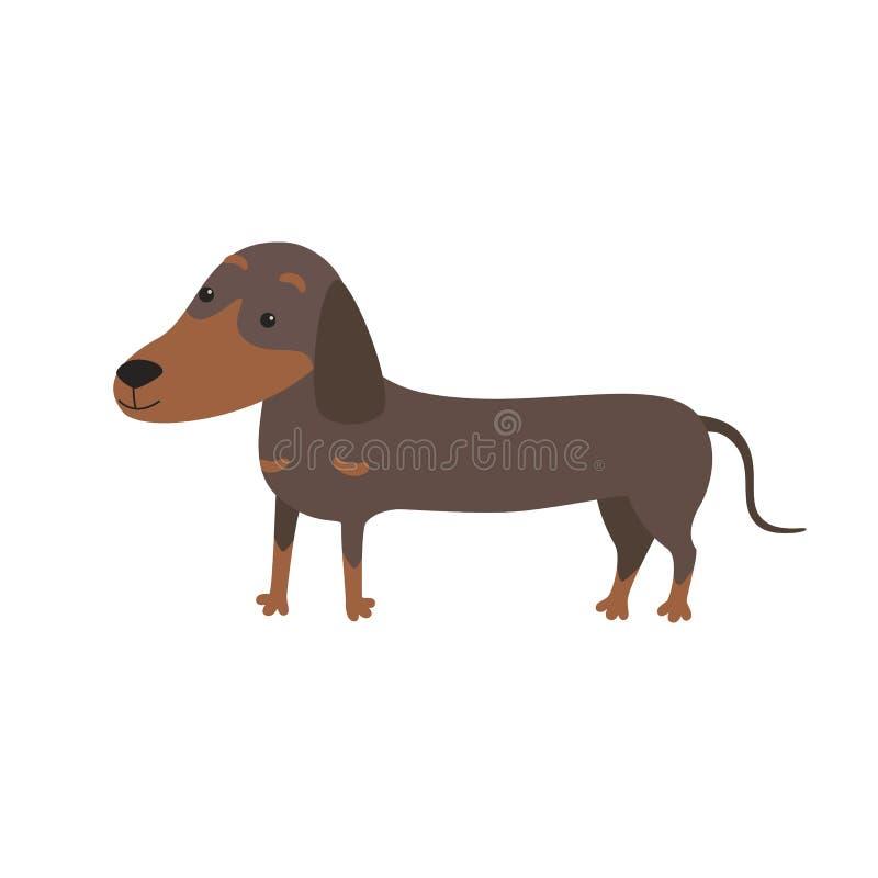 动画片逗人喜爱的纯血统达克斯猎犬狗的传染媒介例证 向量例证