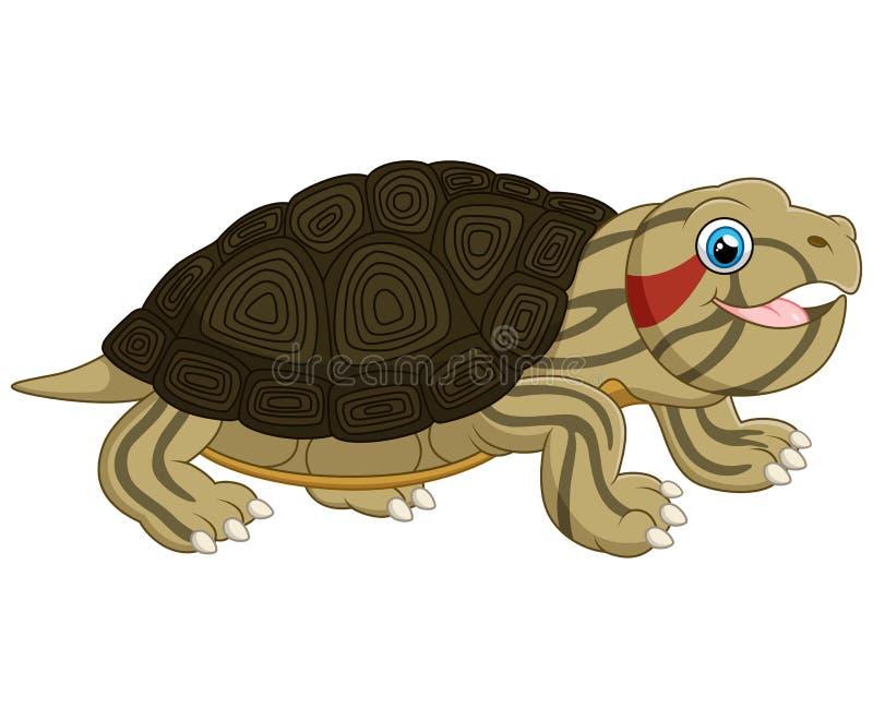 动画片婴孩逗人喜爱的乌龟 皇族释放例证