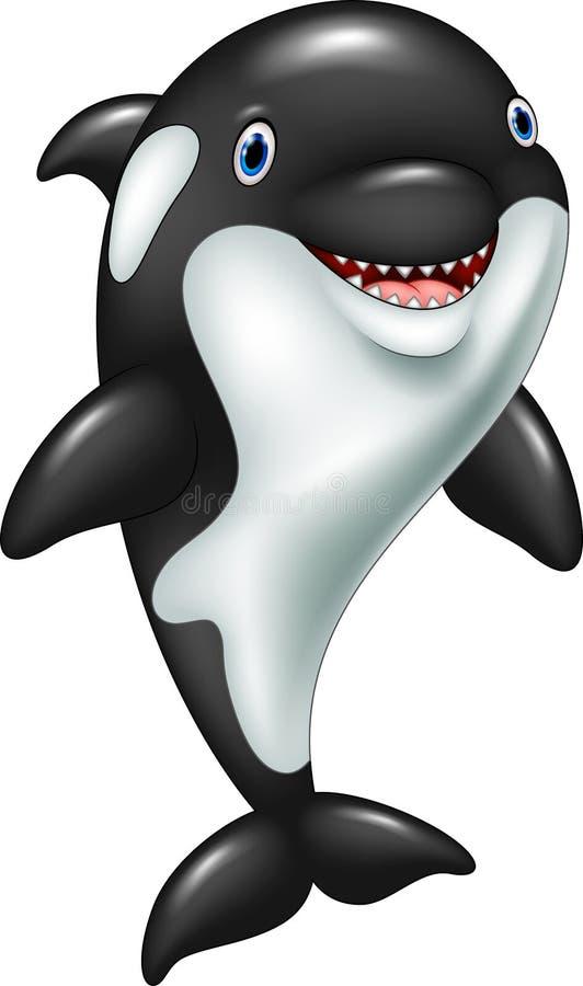 动画片滑稽的虎鲸身分 库存例证