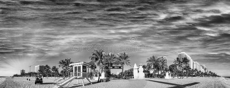 劳德代尔堡的海滩黑白全景小花- 免版税库存照片